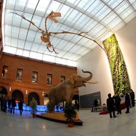 Entrée du Muséum de Toulouse